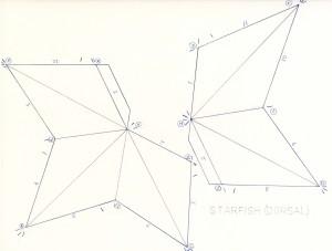 Starfish Dorsal Net web